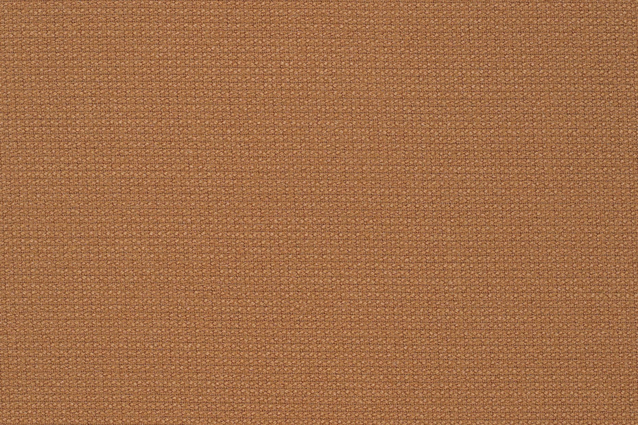 Cava 3 brown shades
