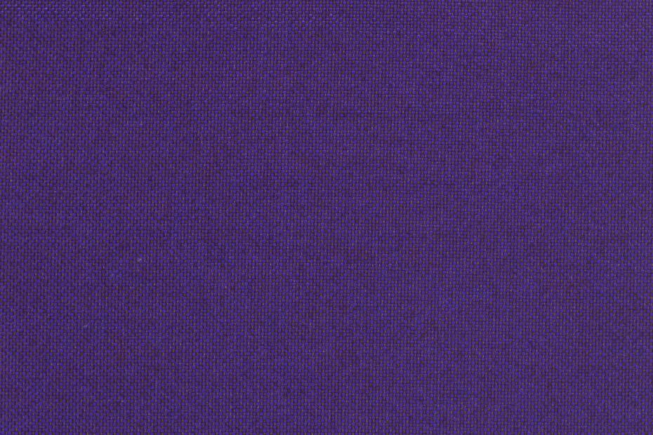 Field Violetttöne