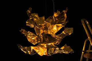 Lichtenfest Gold  by  Lichtlauf