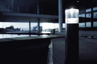 Primula B2  by  Lightyears