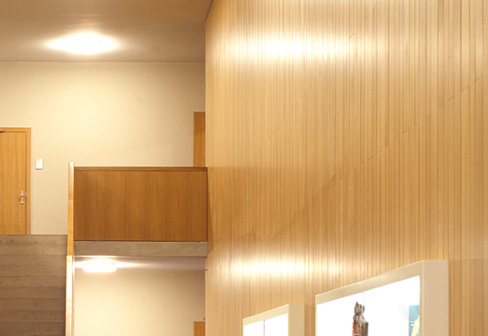FIREwood composite genuine wood veneer panels - FIREwood Composite Genuine Wood Veneer Panels By Lindner Group