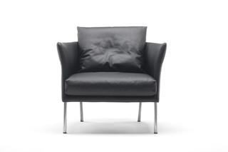 Curve bergère Arm chair  by  Living Divani