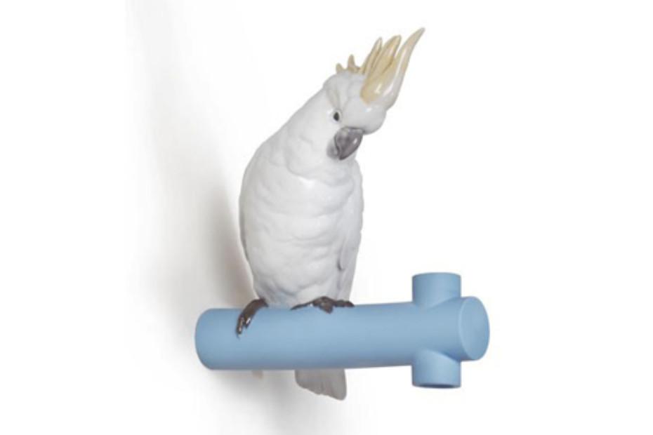 Parrot Hang