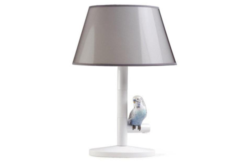 Parrot Night