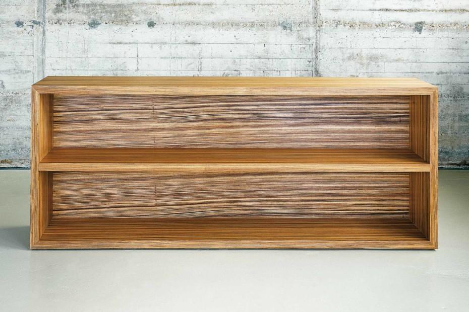 Palm shelf