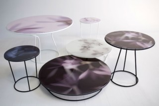 Around the Roses  by  Moroso