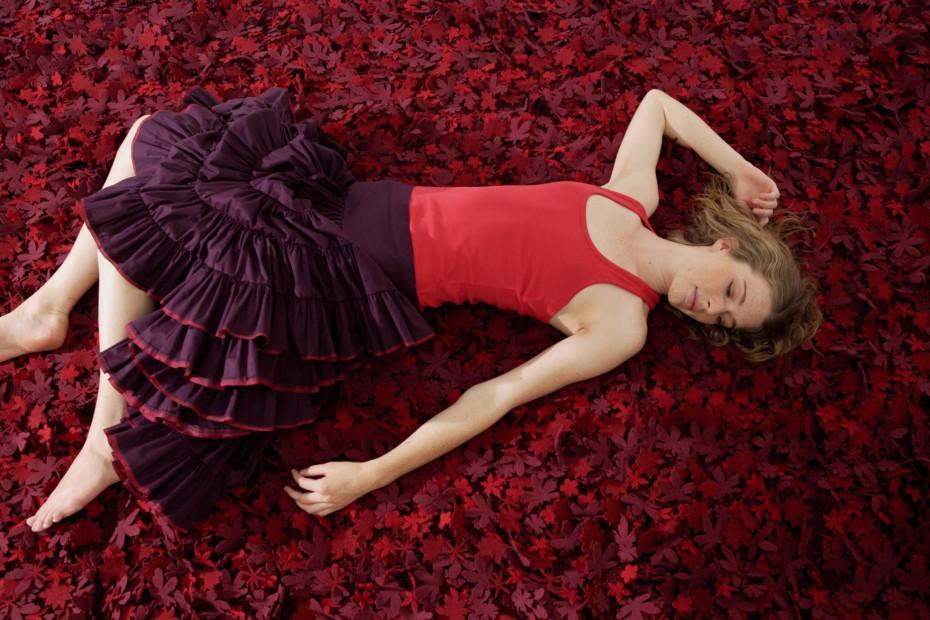 Little field of flowers red