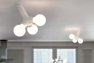 DNA Wall/Ceiling  by  next home collection
