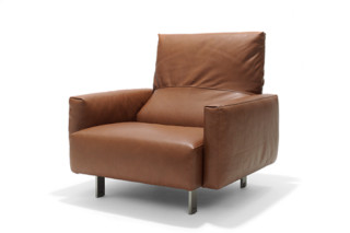 Edoardo easy chair  by  Linteloo