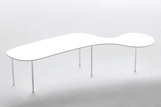 Tortoise Shape coffee table  by  Living Divani