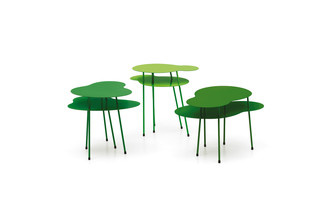 Amazonas  by  OFFECCT