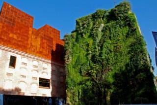 Caixa Forum, Madrid  von  Patrick Blanc Vertical Garden
