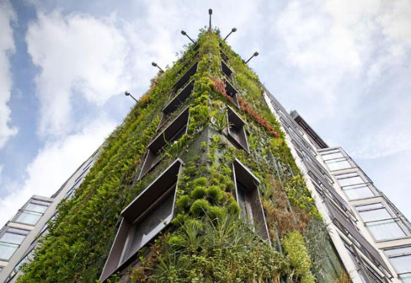 Hotel athanaeum london von patrick blanc vertical garden for Giardino verticale