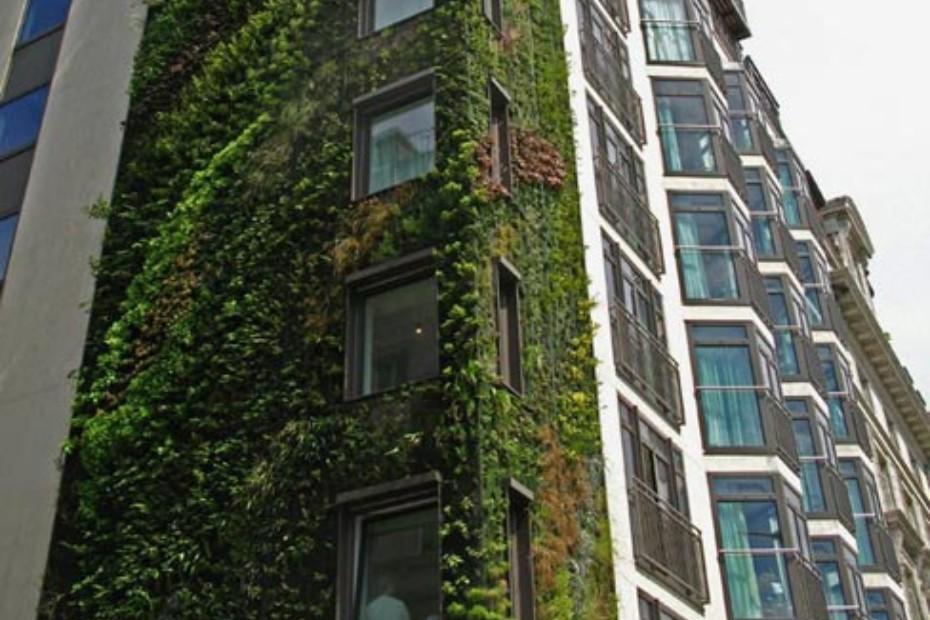 Hotel Athanaeum, London