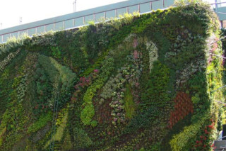 Marché des Halles, Avignon  von  Patrick Blanc Vertical Garden