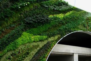 Pont Juvénal, Aix-en-Provence  von  Patrick Blanc Vertical Garden
