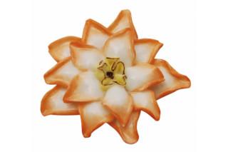 Kaktusblume  von  Porzellan-Manufaktur Nymphenburg
