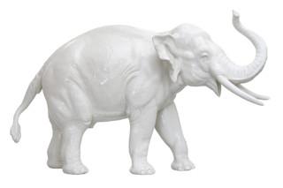 Elefant Nr.811a weiß  von  Porzellan-Manufaktur Nymphenburg