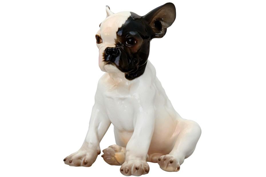 French bulldog sitting No.649/I