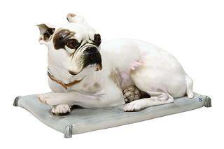 French bulldog with cushion No.554a  by  Porzellan-Manufaktur Nymphenburg