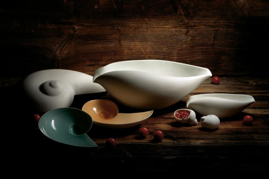 Moon snail bowl