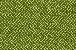 CREDO moss  by  rohi