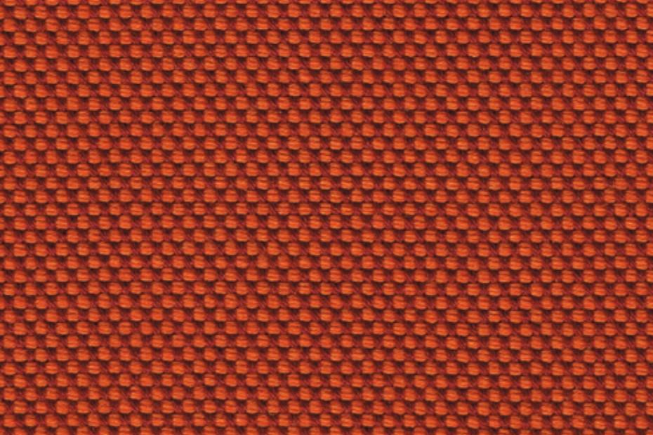 NOVUM coral