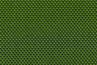 NOVUM moss  von  rohi