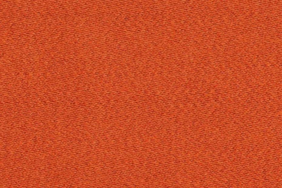 SOLO coral