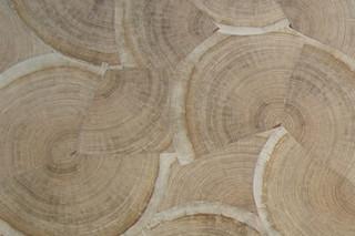 Hirnholzfurnier B  von  Rohol