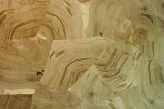 Hirnholzfurnier  von  Rohol