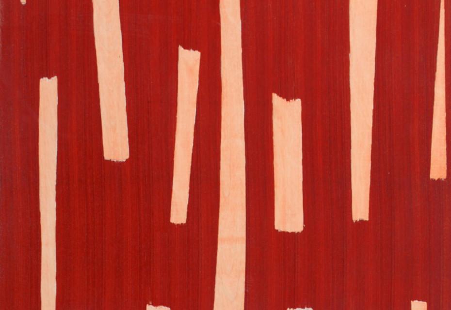 Veneer padouk/birch