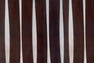 Veneer robinie/birch  by  Rohol