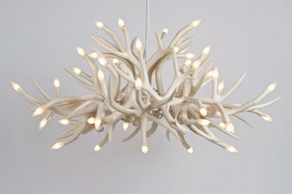 Superordinate Antler Chandelier 24 Antlers  von  Roll & Hill
