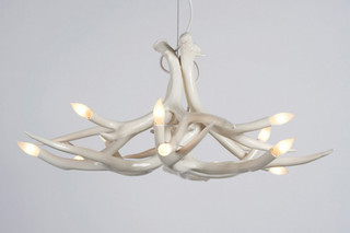 Superordinate Antler Chandelier 6 Antlers  von  Roll & Hill