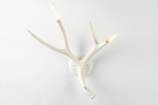 Superordinate Antler Sconce  von  Roll & Hill