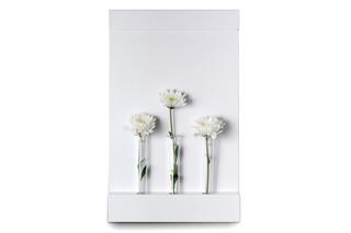 ANNEXorg Blumenvase  von  Serafini