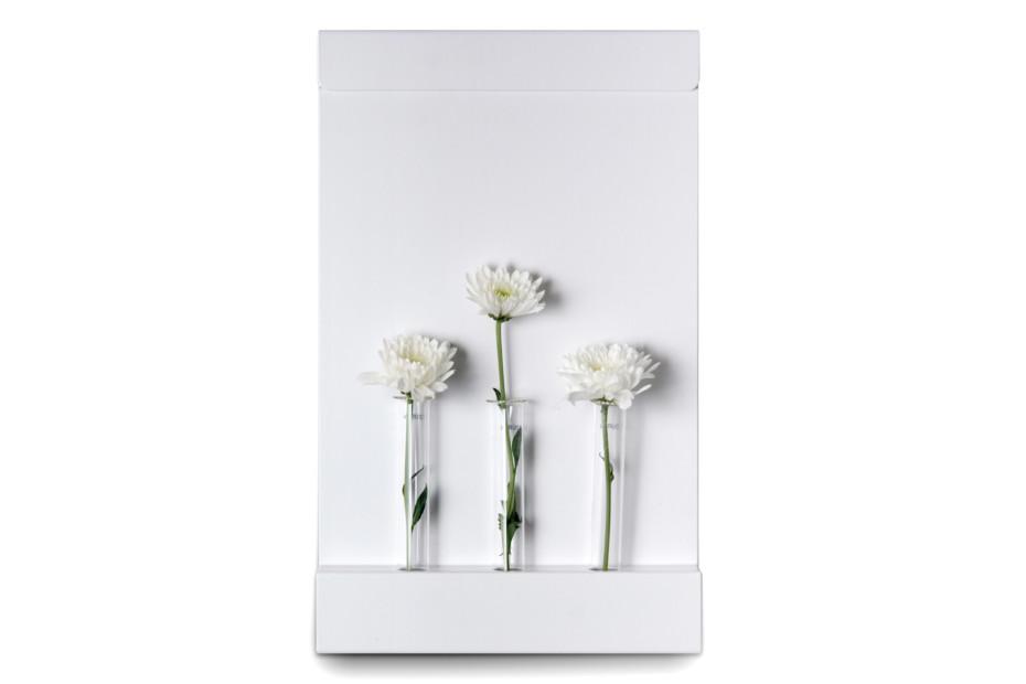 ANNEXorg vase