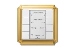 ANTIK Multifunktionstaster  von  Merten