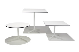 Multi Table  by  Modus