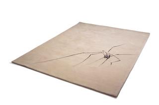 Spider  von  Modus