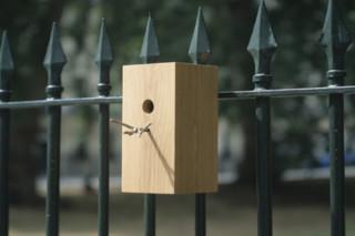 Bird Box  by  Thorsten van Elten