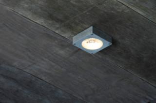 Free Globe Wall/Ceiling  by  Tobias Grau