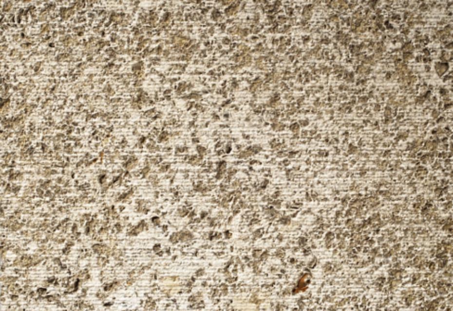 Memphis Ra shell limestone fluted