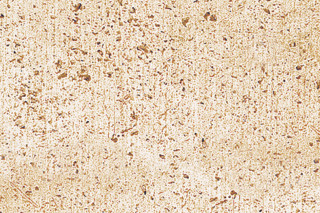 Troja travertine light nidged  by  TRACO Manufactur