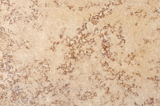 Troja Travertine primed  by  TRACO Manufactur