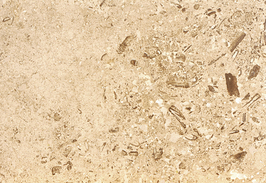 Troja Travertine Special primed