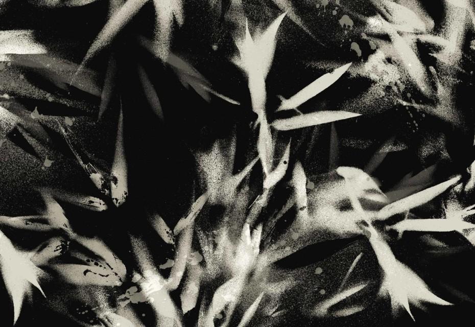 Bambucrew REF 1985_5