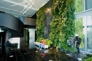 Indoor Wall, Natura Towers  by  Vertical Garden Design
