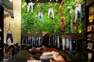 Indoor Wall, Replay  by  Vertical Garden Design